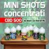 Mini Shot Cannabis Concentrato CBD 500 10ml