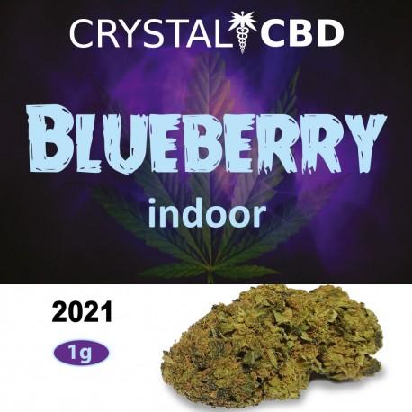 Blueberry 1g