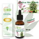 Crystal CBD 500 V1 Strong Sativa Mr Kush
