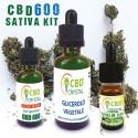 Kit Scomposto Sativa CBD 600