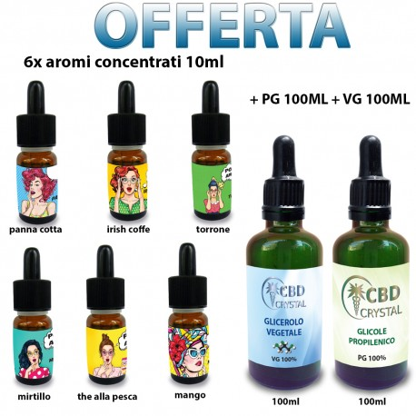 6x concentrated flavors - PG 100ml - VG 100ml