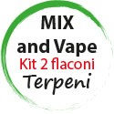 Mix and Vape Terpeni